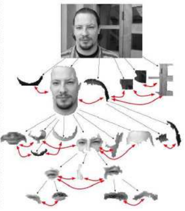 Connected Segmentation Tree For Object Modeling