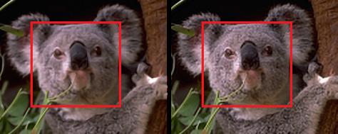 Transform Domain Methods for Single Image Super-Resolution
